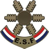 Étoile de Bronze - École du Ski Français